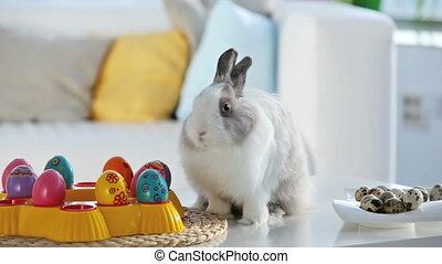 Waiting for Easter - Adorable bunny surrounded with Easter...