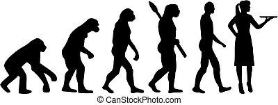 Waitress evolution