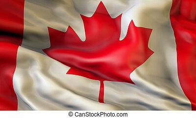 waiving, drapeau, de, canada