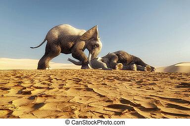 Wake up - Elephant tries to wake up another elephant . ...