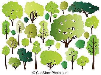 wald, bäume, silhouetten