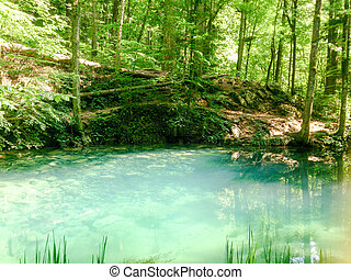 wald, fluß, in, berge, naturquerformat, mit, bäume, und, river.