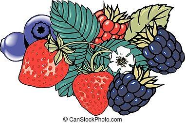 wald, früchte