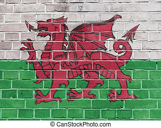 Wales Politics Concept: Welsh Flag Wall