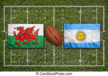 Wales vs. Argentina flags on rugby field - Wales vs....