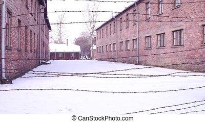 Walk along old barbed wire fence of Auschwitz Birkenau...
