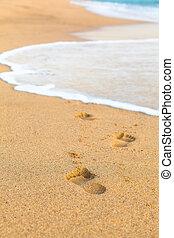 Walk Along the Sea