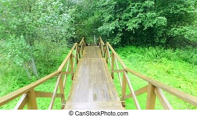 Walk Down via Wooden Stairs with Railing, rain forrest