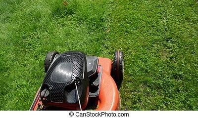 walk grass mower meadow - walk near move cut grass lawn...
