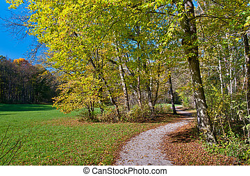 Walk in the park - Beautiful peaceful walk in the autumn ...