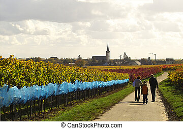 a family with children having a walk in wineyrds, Germany