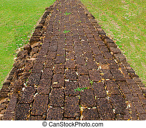 Walk path in the park with green grass background