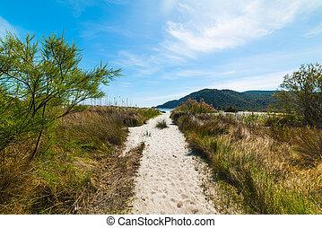 Walk path to the beach in Cala Pira