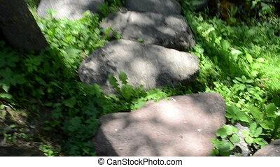 walk stone stream water