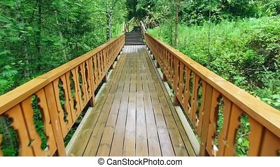 Walk Up via Wooden Stairs with Railing, rain forrest