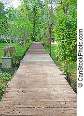walk way in the garden