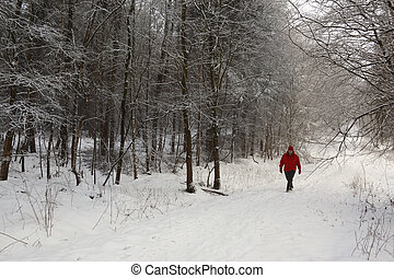 Walker on a snow covered country lane