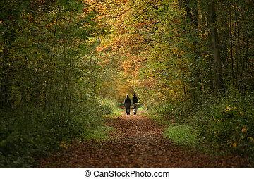 2 women walking along woodland path in Autumn