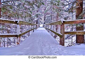 walkin', in, uno, wonderland inverno