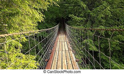 Walking Across Suspension Bridge POV at Fall Creek Falls,...