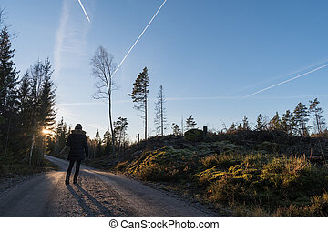 Walking at a dirt road in the forest