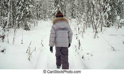 Walking boy in the winter woods