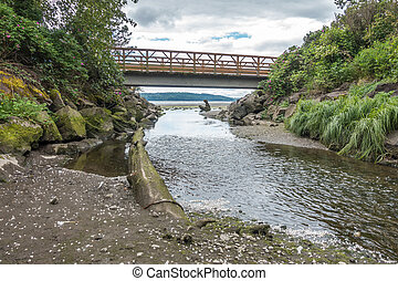 Walking Bridge And Stream 5