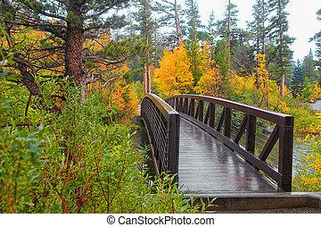Walking bridge near Mammoth lakes in California