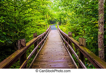 Walking bridge on the Limberlost Trail in Shenandoah National Park, Virginia.
