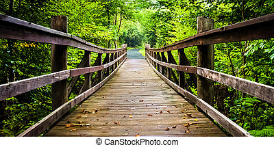 Walking bridge on the Limberlost Trail in Shenandoah...