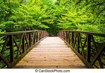 Walking bridge over a stream, at Great Smoky Mountains...