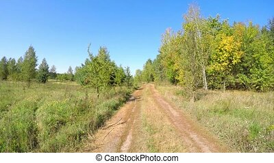 Walking by the rural road in summer