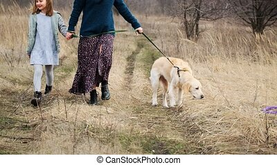 Walking dog in early spring nature - Woman and girl walking ...