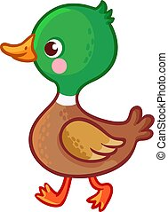 Vector illustration with a bird in cartoon style. - Walking...