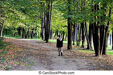 walking in autumn forest alone