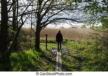 Walking in nature at spring