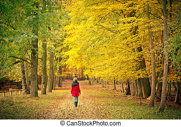 Walking in the autumn park - Young woman walking in the...