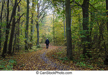 Walking man at a winding footpath at autumn