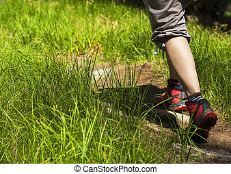 Walking on a wooden path