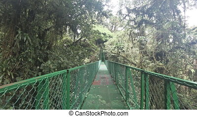 Walking on hanging bridge at natural rainforest in Costa...