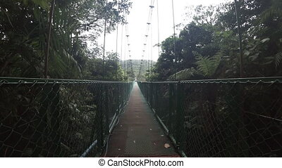 Walking on hanging bridge at the rainforest in Costa Rica -...