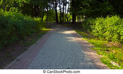 Walking on the road in the park