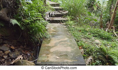 Walking on tropical forest path at summer. Point of view of walking on trail in park. Trekking of hiking in the mountains. Sidewalk in the forest Close up POV