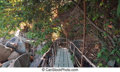 Walking on wooden bridge in jungle. Vacation, travel concept