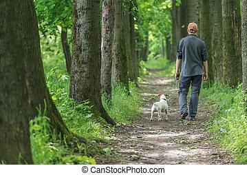 walking - man and dog walking on park