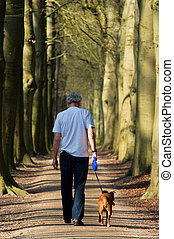 Walking the dog in forest