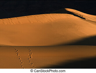 Two people walking onlong the ridge of sand dunes at Death Valley National Park in the early morning light.