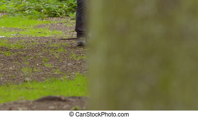 Walking through a park - A panning shot left to right of a ...