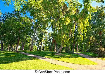 Walking through Buen Retiro Park (Parque de El Retiro)- most...