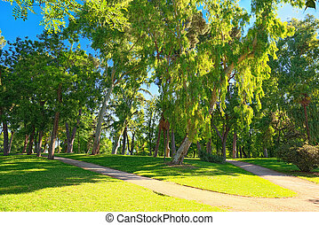Walking through Buen Retiro Park (Parque de El Retiro)- most largest and most beautiful of the Madrid parks. Madrid, Spain.